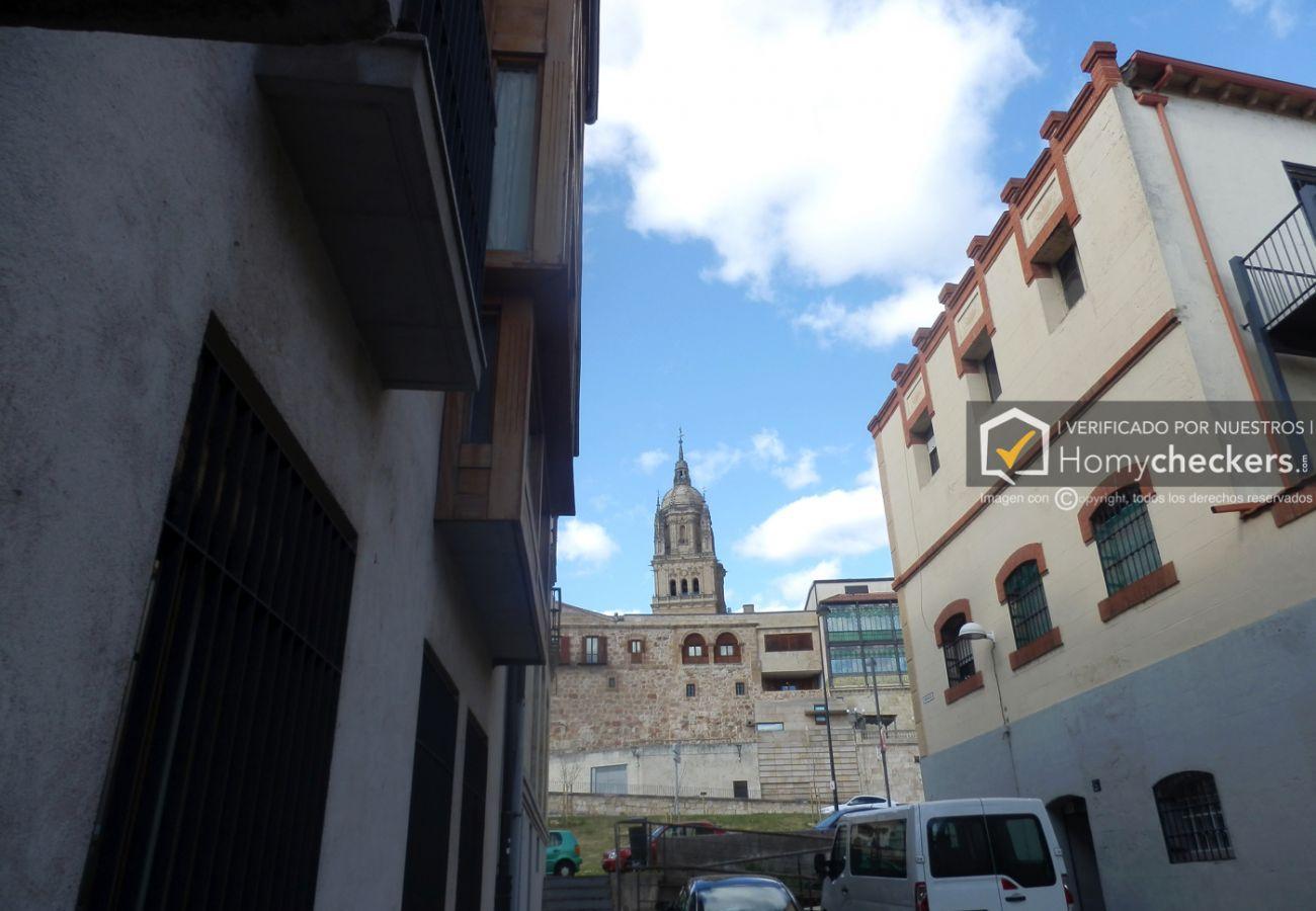 Estudio en Salamanca - ESTUDIO CON PISCINA FRENTE CASA LIS